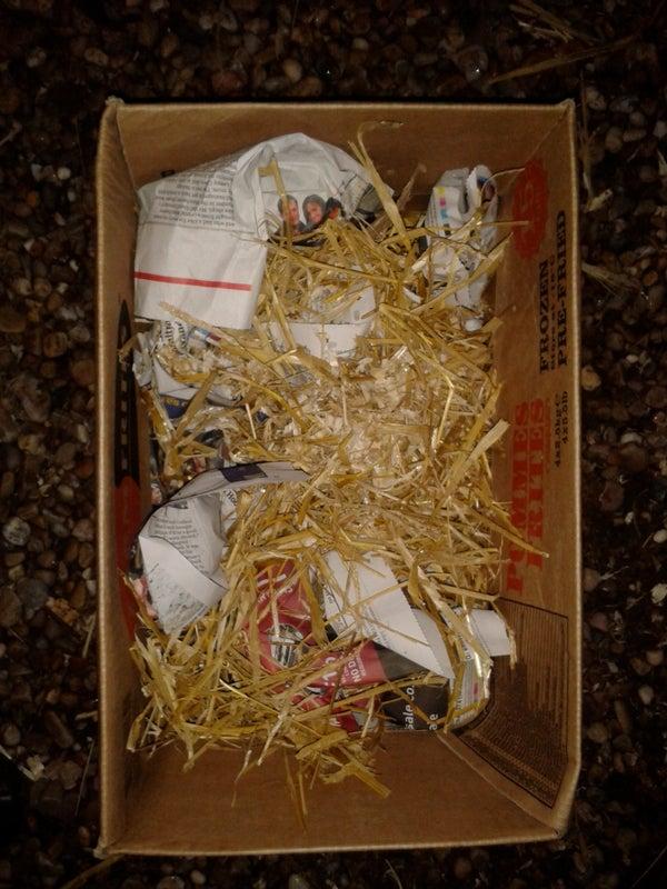 Rabbit Play Box