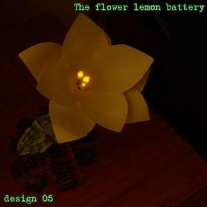 The Flower Lemon Battery, Better Design
