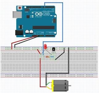 Testing the Circuits