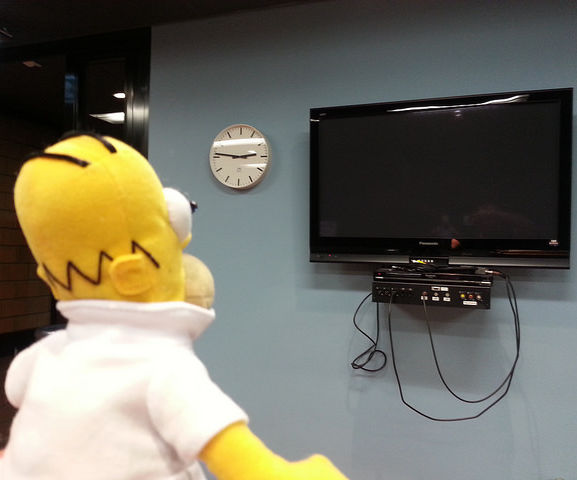 Smart Homer Web-enabled TV remote