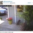Tweeting Cat Door