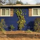 Window Shutters From Reclaimed Barn Wood