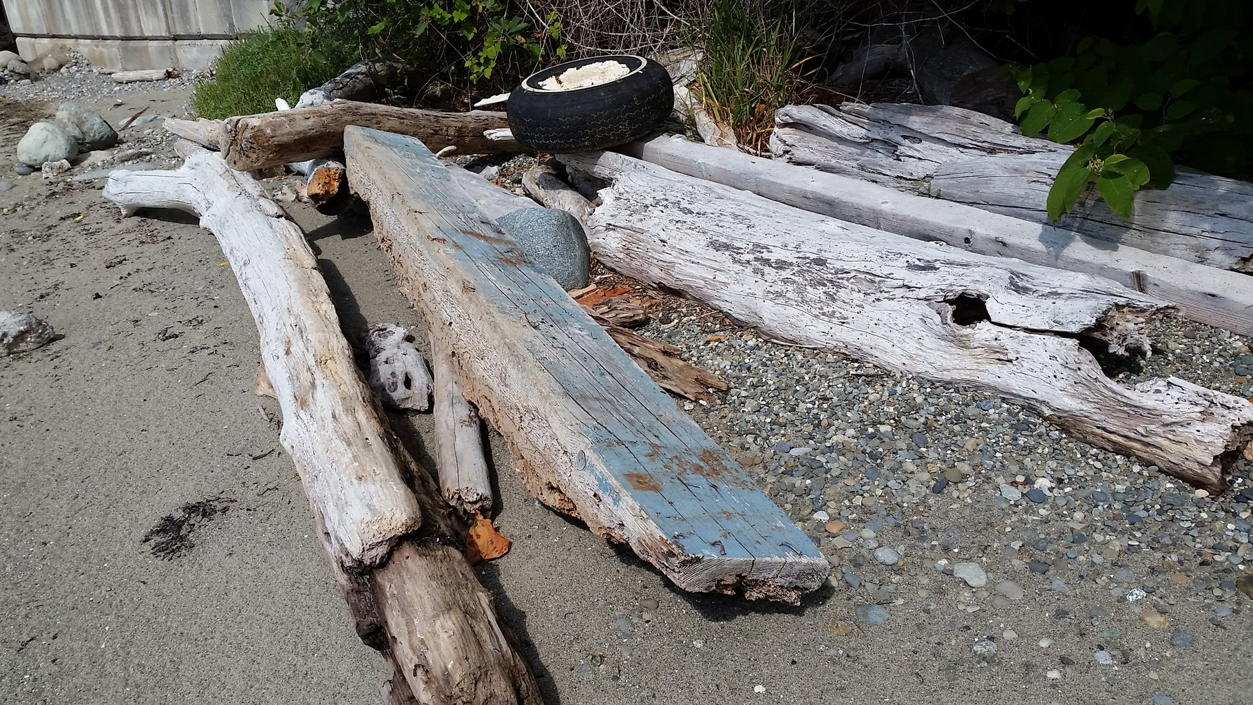 Sourcing Appropriate Driftwood