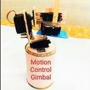 Motion Control Gimbal