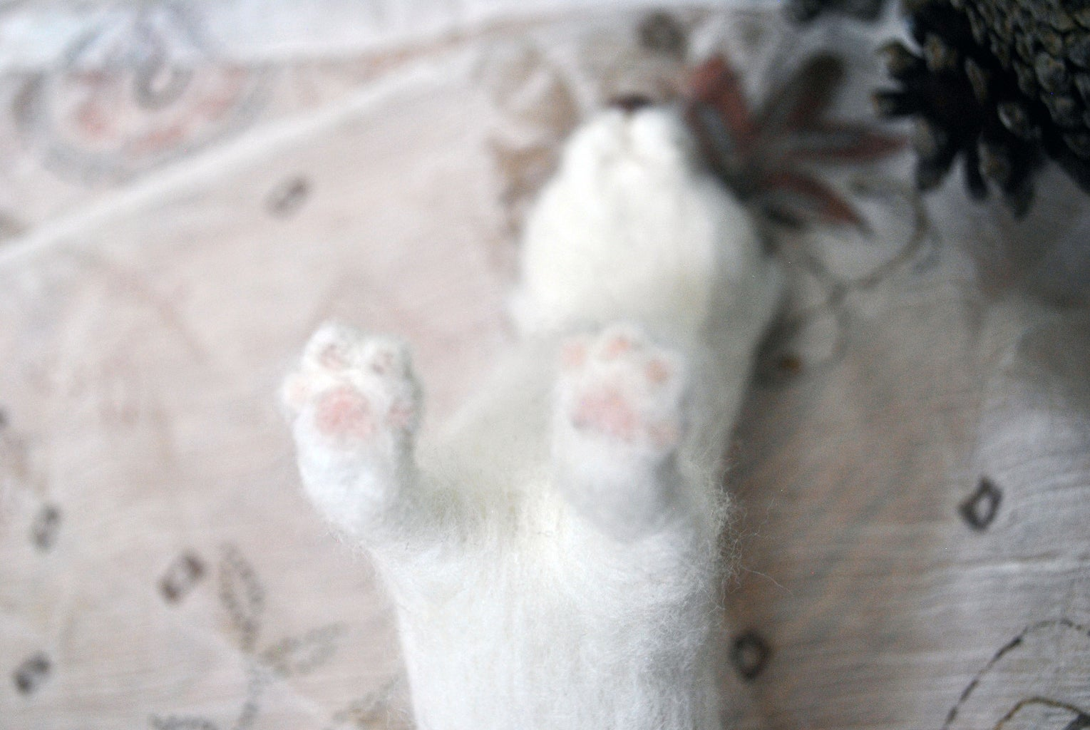 Add Paws