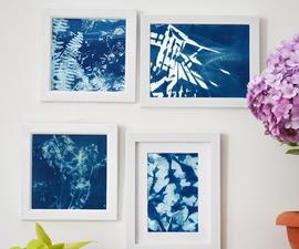 Cyanotype- Sun Printing