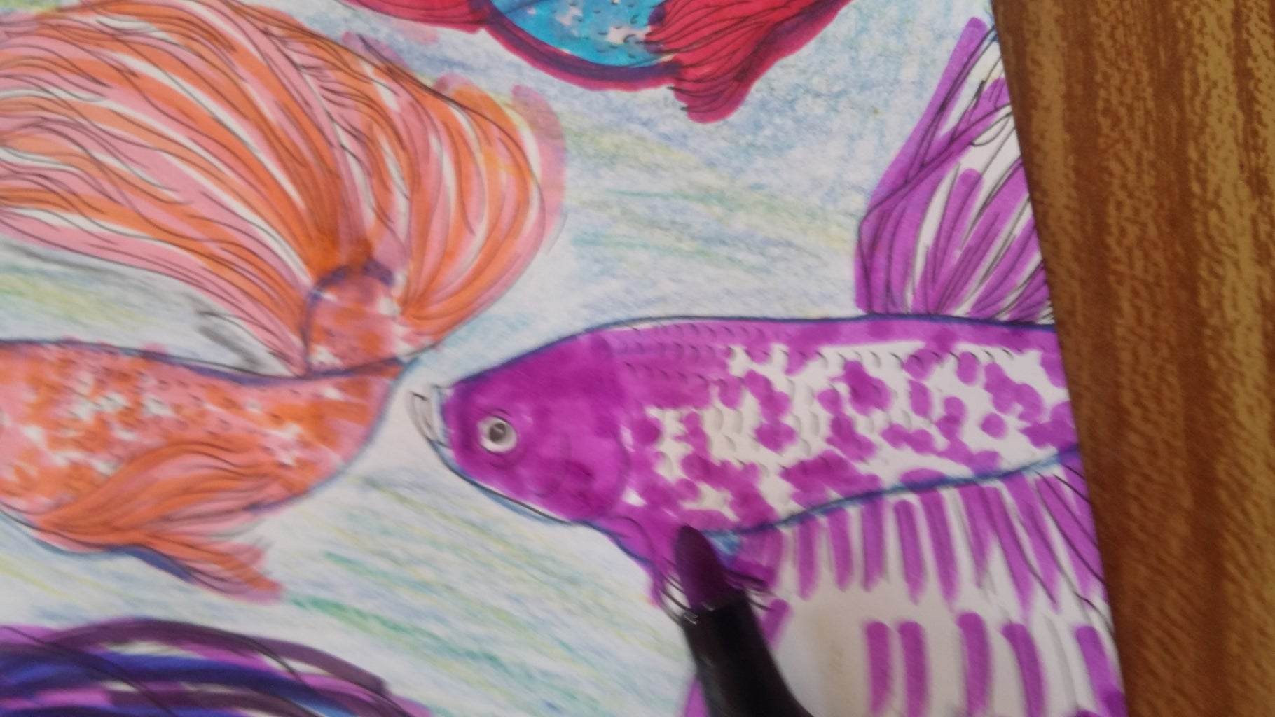 8th & 9th Fish