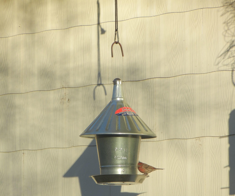 Grain Silo Bird Feeder