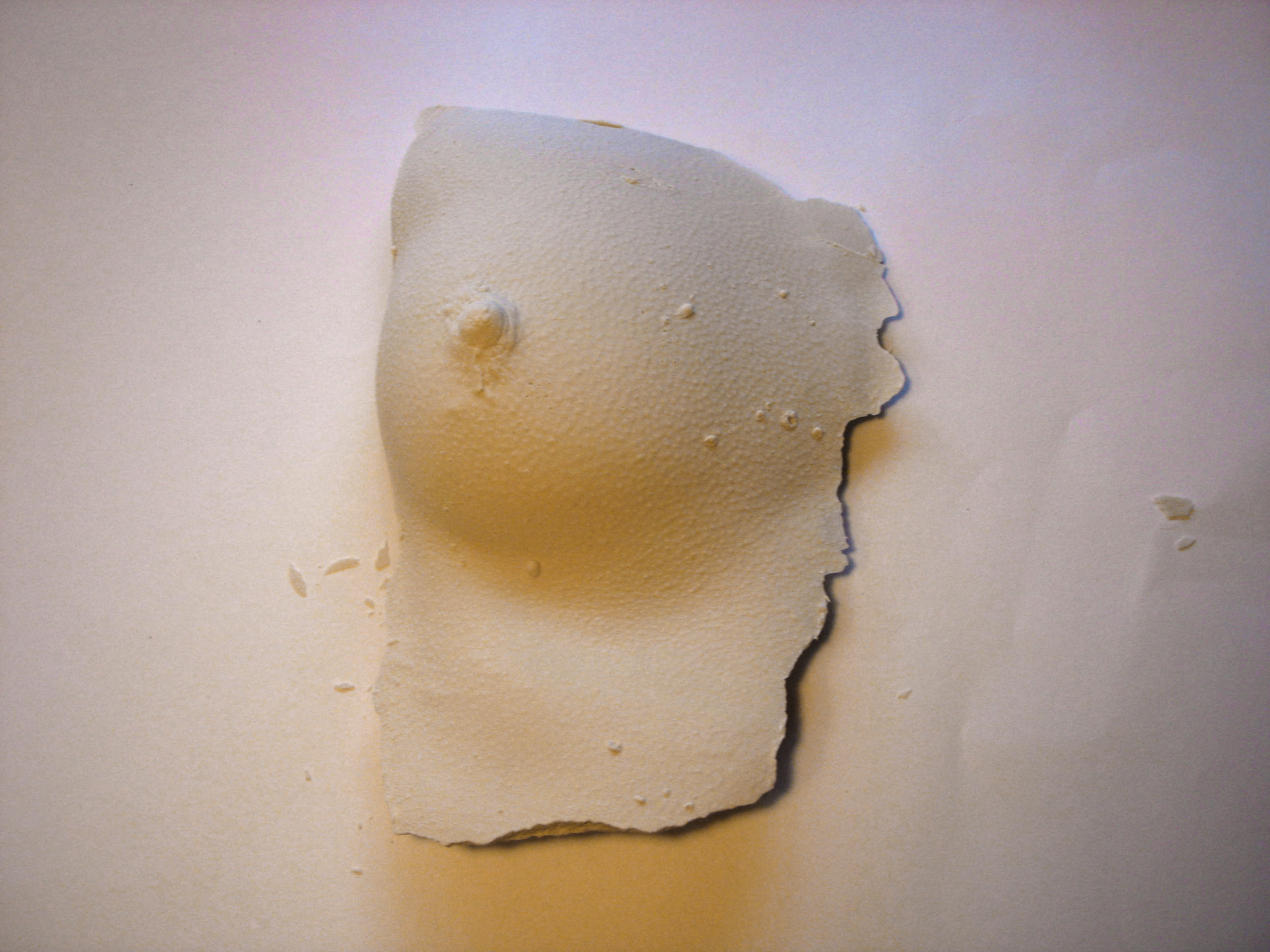 Replicating body parts in plaster