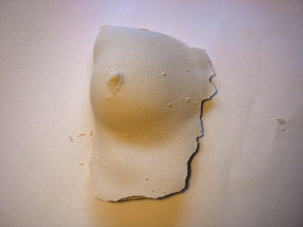 Replicating Body Parts in Plaster