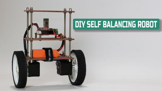 DIY Self Balancing Robot
