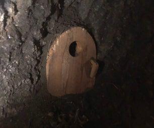 Neighborhood Tree Hobbit Door
