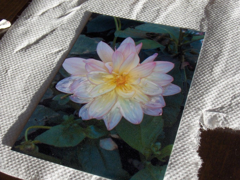 Making Photo Prints Look Like Paintings