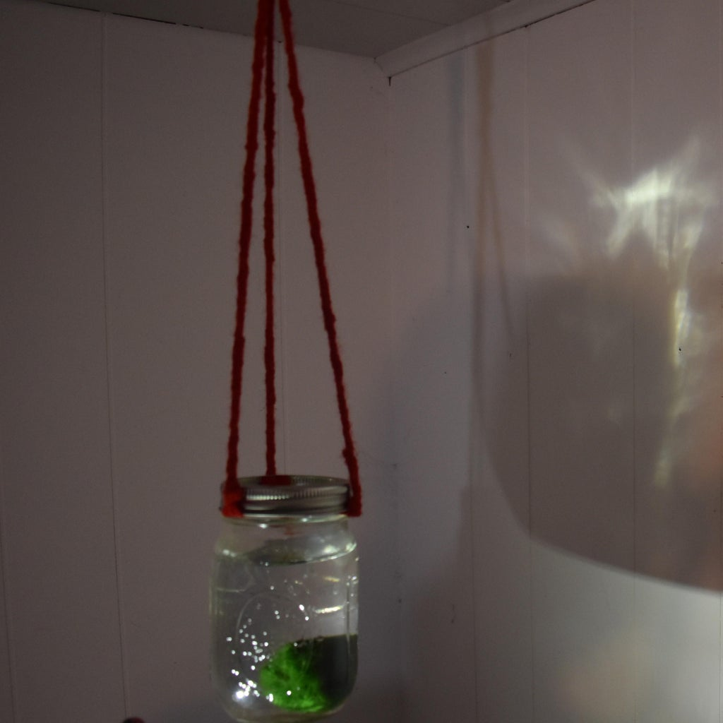 Easy Hanging Aqarium/Terrerium