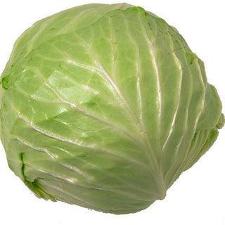 cabbage5.jpg