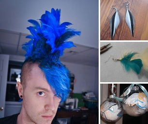 DIY Feather Projects