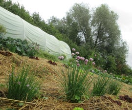 The Corona Diaries - Getting Started With Permaculture Gardening