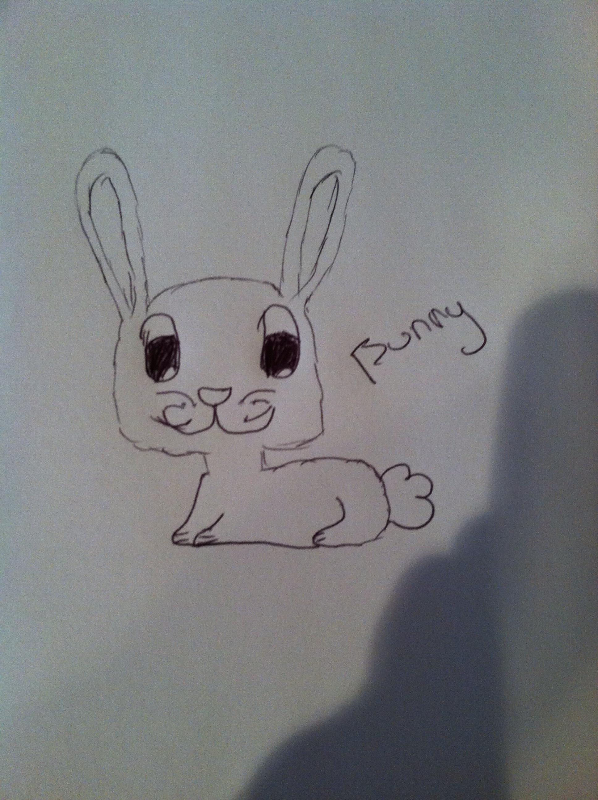How To Draw Cartoon Animals!