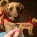 3D Printed Personalized Cookie Cutters