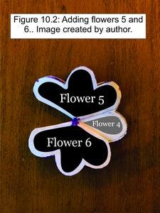 Add the 5th and 6th Flowers to the Bouquet.