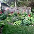 Manera económica y ecológica de hacer una cama de jardín a prueba de malezas