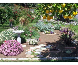 Make an Oasis in Your Front Yard!
