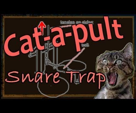 Pressure Activated Spring Snare Trap
