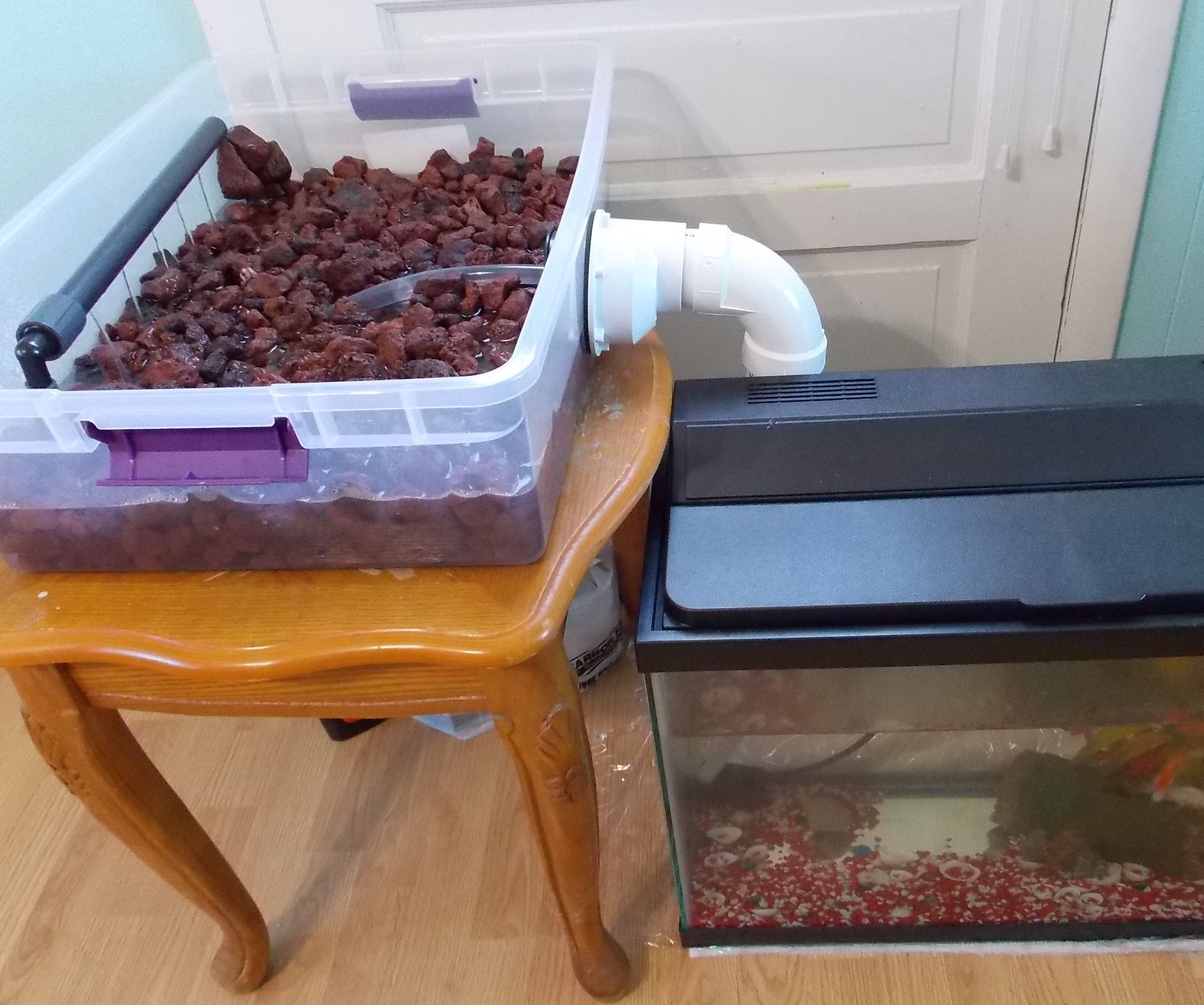 Aquaponics with Existing Aquarium
