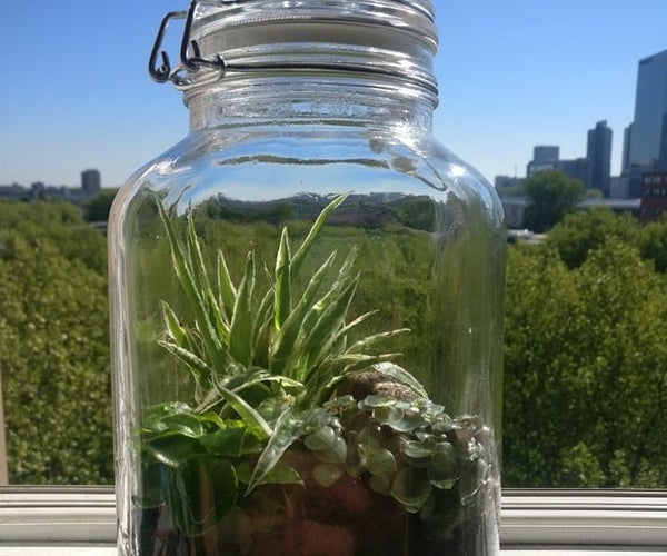 Do It Your-self Sustaining Ecosystem-