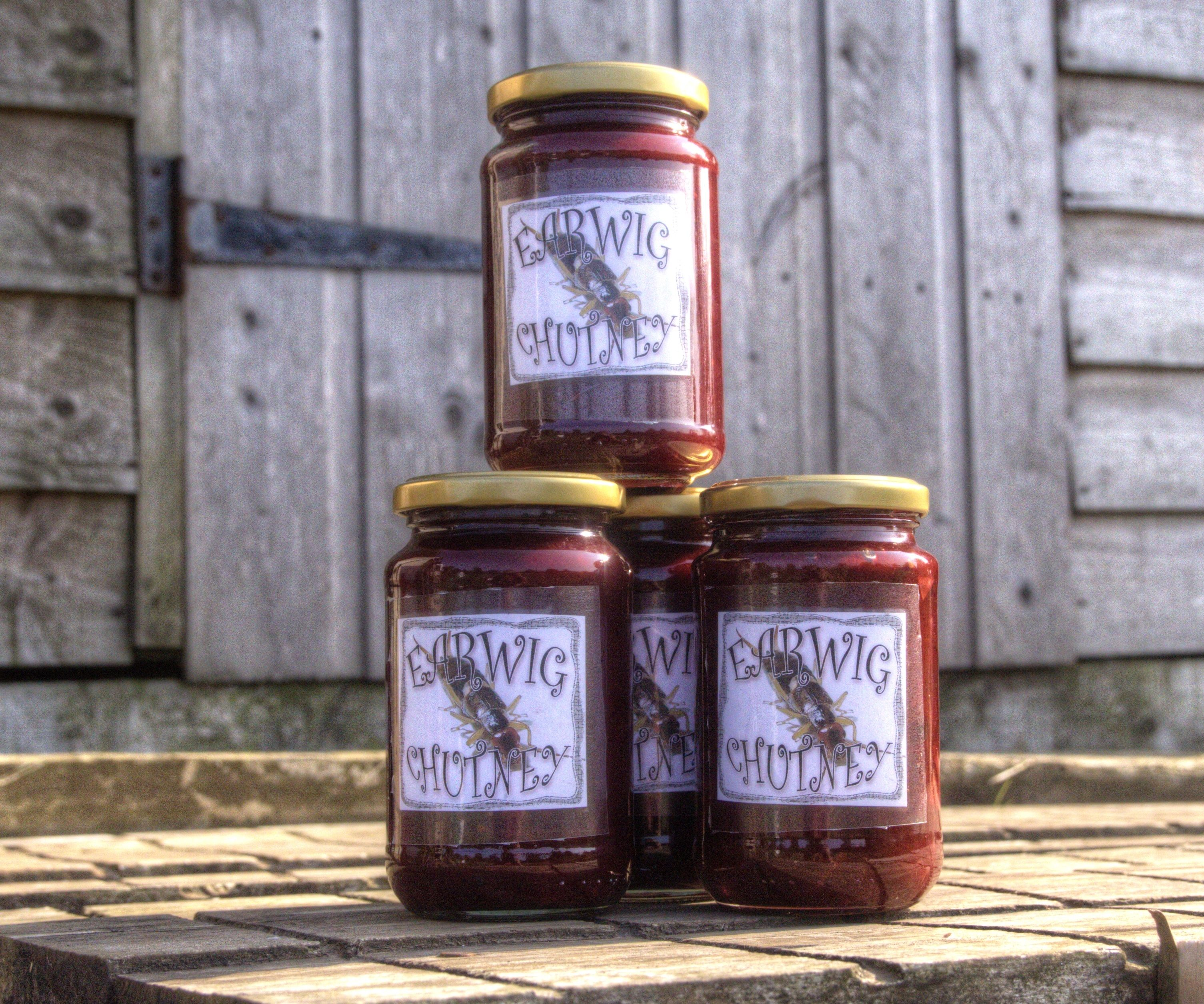 Earwig Chutney - A Grandmother's Confession