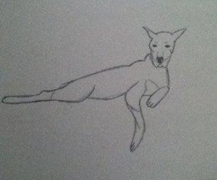 Draw a Sleepy Dog