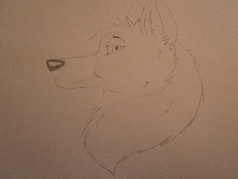 Drawing a Cartoon Fox