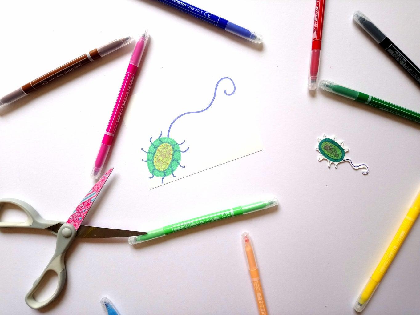 Activity 5: Teeny Tiny Germs