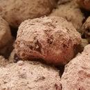 Chocolate Truffles - Belgian Version