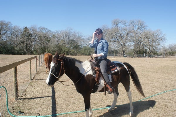 Saddling a Horse the Western Way