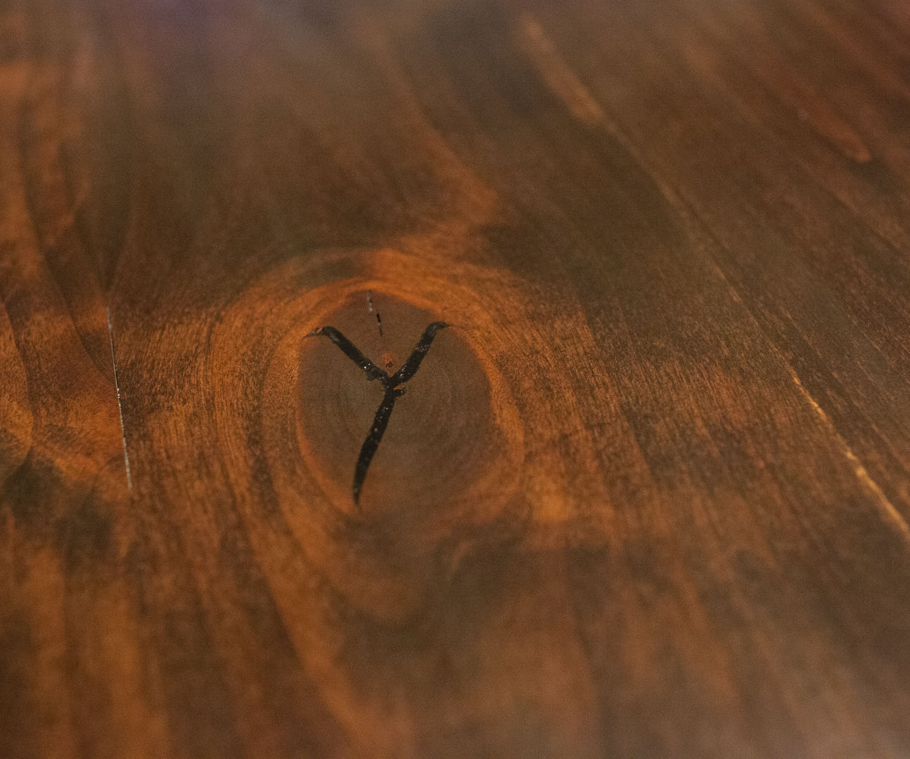 Using Epoxy and Dye to Fill Knots and Cracks in Wood