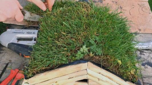 Grass Sod.