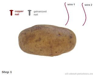 如何用土豆为电子设备供电。