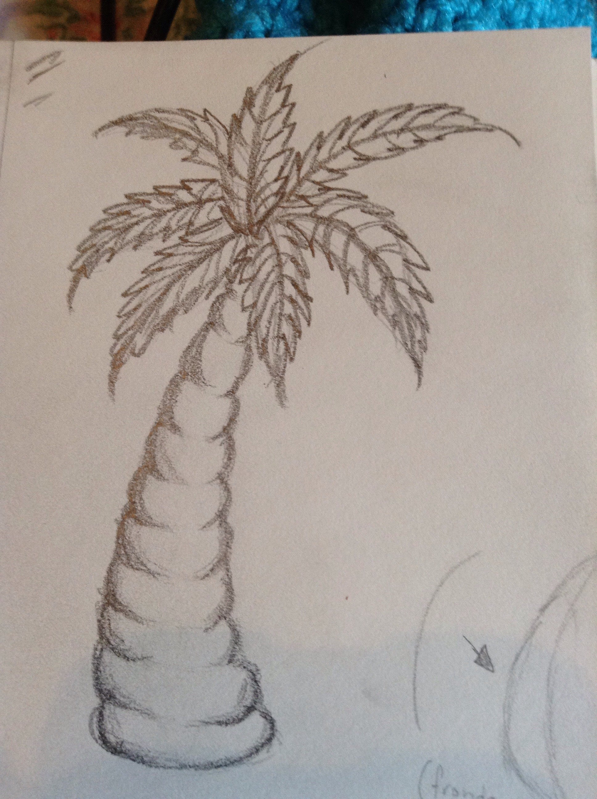 How To Draw A Palm Tree 6 Steps Instructables