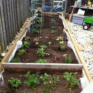 Raised Garden Bed - on Legs!