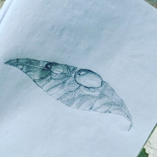 Easy 3D Art Pencil Drawing: How to Draw 3D Dew Drop on Leaf