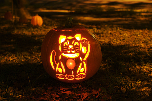 Chinese Lucky Cat-O-Lantern