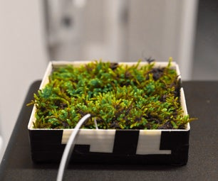Indoor Moss Microbial Fuel Cell