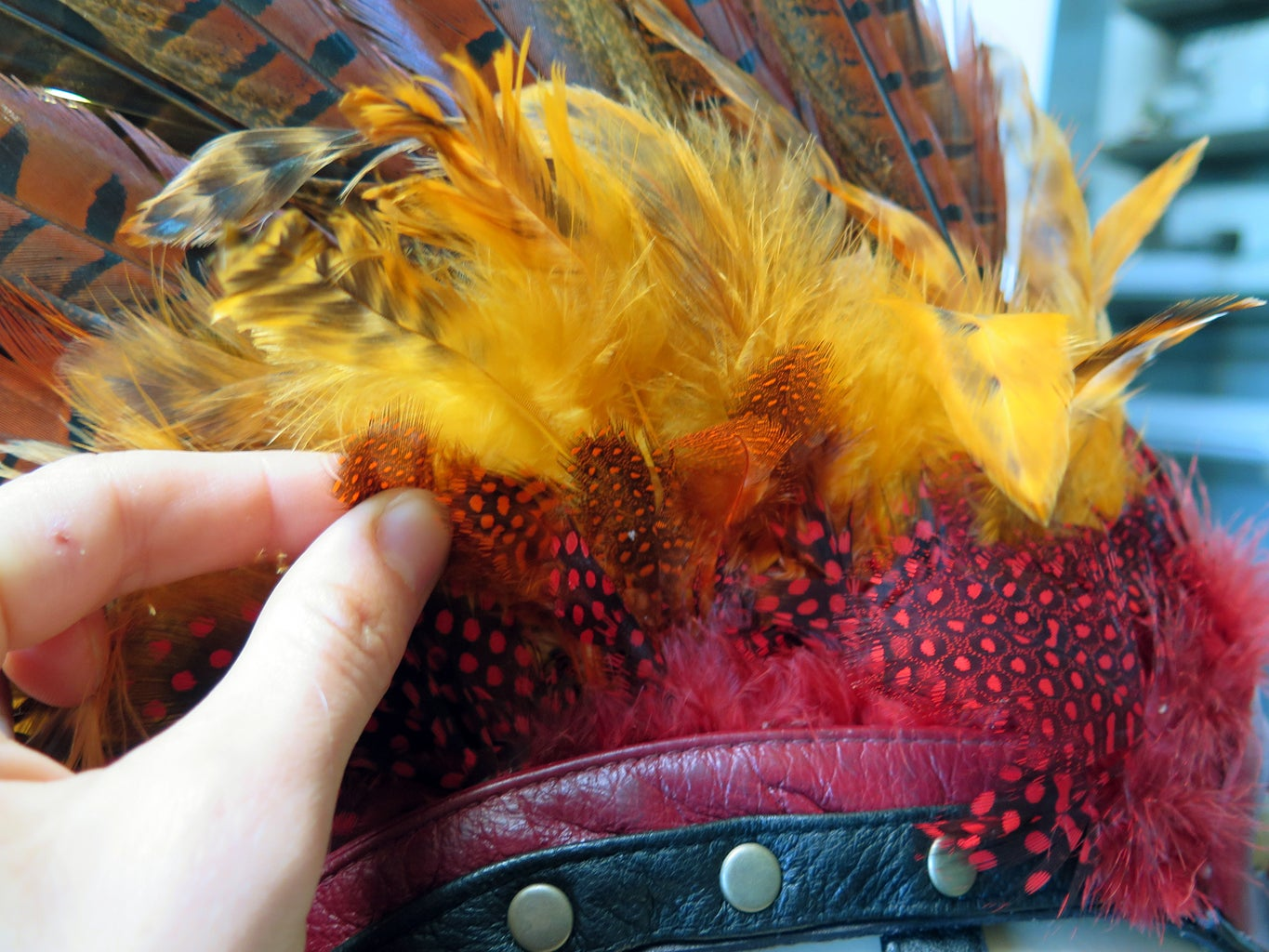 More Feathers