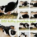 DIY Cardboard Cat Scratch Pad Upcycled Produce Box