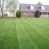 Stripe Your Lawn