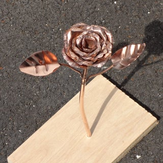 Copper Rose - an Everlasting Flower!