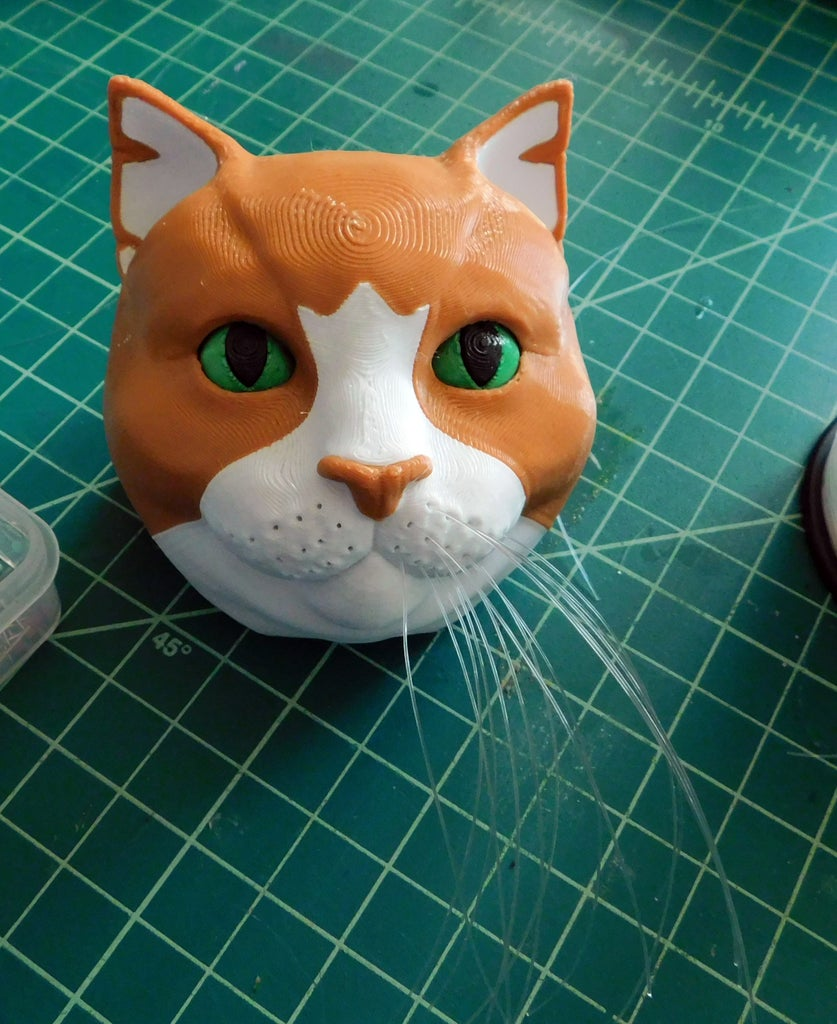 Model Assembly: Whiskers