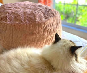 DIY Bean Bag Chair for Pets