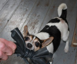 Rubber Dog Toy